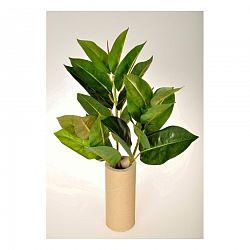 Umelá kvetina Ficus Elastica, 45 cm